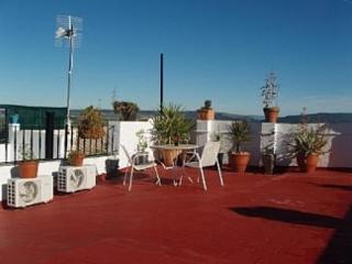 Roof Terrace Area 2
