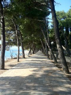 Promenade in front of the house that leads from acity of Bol towards a Zlatni rat beach.
