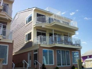 238 Bay Avenue 2nd Floor 113756