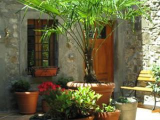 Enjoy the courtyard garden