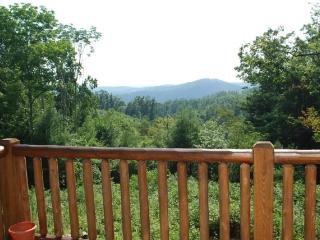 Grand Mountain Vistas-Pet Friendly, Views, Fire pit