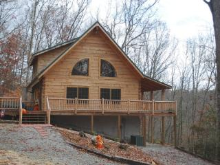 Running Bear-Private Log Cabin_Private_Log Cabin_WIFI_Pet Friendly_Upscale_Air