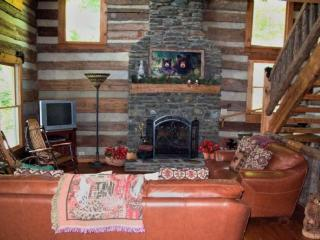 Amazing Gaze-Views, Game Room, Spacious log cabin