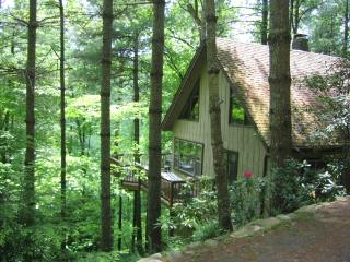 Stonecliff-River Access, Hiking Nearby, Wood burning Fireplace, Game Room, Famil