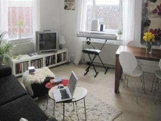 Nice Apartment In The Heart Of Copenhagen - 1333