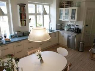 Family Friendly Apartment in the Heart of Copenhagen - 3661