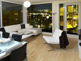 Modern 2 Bedroom Panorama Apartment in Oslo's Grunerlokka - 489