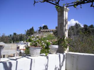 Casa Milodi, Panormos