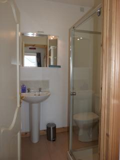 Ensuite shower off master bedroom