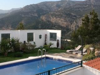 The pool, garden and back drop mountain
