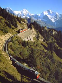 schynige platte rack rail way to the alpine gardens