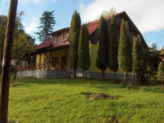 Villa Roseta NorthTransylvania, Carbunari
