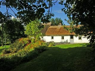 191- Burren, Newquay