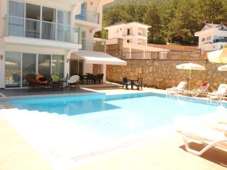 Luxury Holiday villa&pool-Turquoise Coast Turkey, Oludeniz