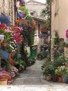 One of the bueatiful streets in an Umbrian town