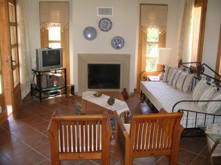 Lounge of Fig Tree Villa