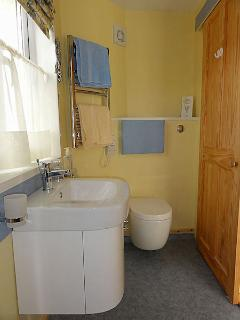 The bright and cheerful sunny yellow and blue ensuite shower and toilet.