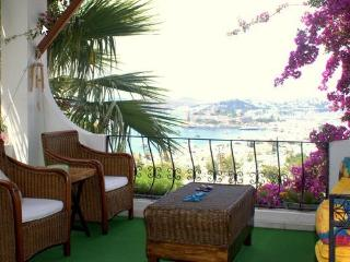 Central with best Bodrum view