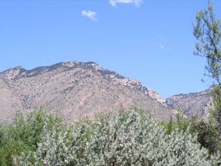 First Floor 2 Bedroom with Great Mountain Views!, Tucson