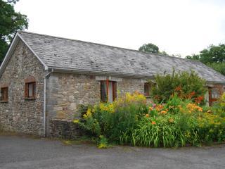 Carreg Cennen cottage, Llandeilo