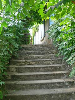Explore the beautiful old buildings, the stairs up to the terrace.