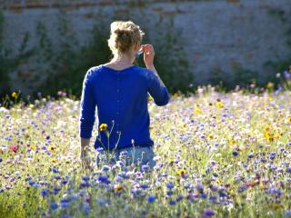 La prairie fleurie