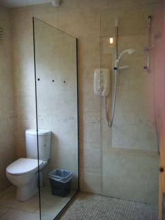 Downstairs bathroom - double shower/toilet/wash-hand basin