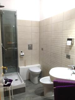 The comfortable en-suite bathroom has a big shower, hot water always available, hairdryer...