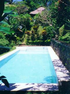 Established 'Old Bali' style private secluded serene estate near Ubud, w/staff