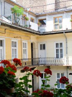 Red flowers on the courtyard terrace in summer