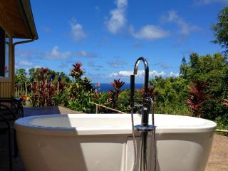 Whispering Bamboo cottage ocean views, pool, WIFI, Haiku