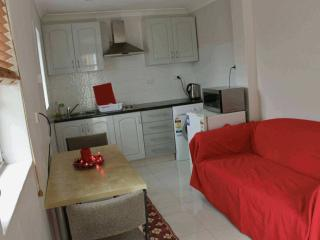 Fully equipped kitchen with dining set and red sofa