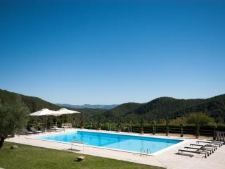 Newly renovated Tuscan villa - amazing views, pool, tennis