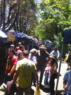 Organic market in surrounding area
