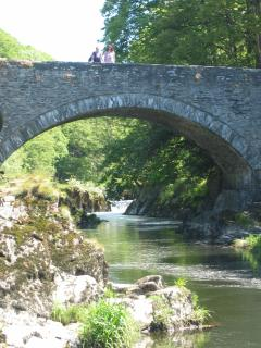 Cenarth Falls, great for fishing, coracles+salmon leap