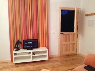 Screen with DVD, USB ports and wifi to play your music or watch films
