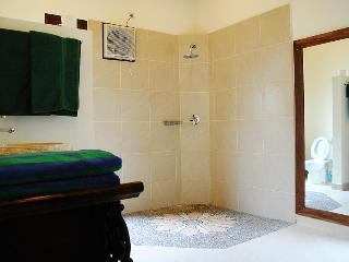 The master bathroom has a rain shower with pebble floor.