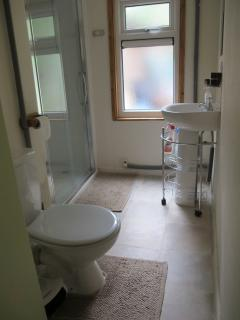 Large Shower & Toilet