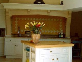 Large spacious well equipped Open Plan Kitchen with beautiful view of the pool and garden