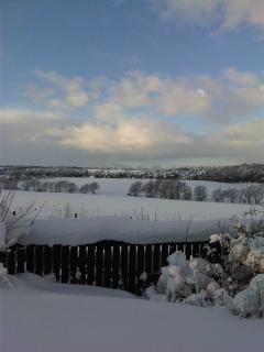 Winter 2010 in the surrounding countryside