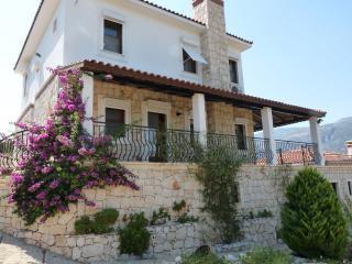 Villa Dionysus, KAS