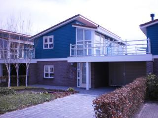 Water holidayhouse Zilverreiger 2 at the waterfront, Workum