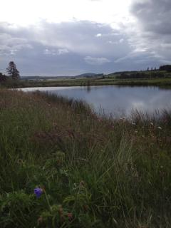 The farm pond, a gentle stroll away from the Hayloft.
