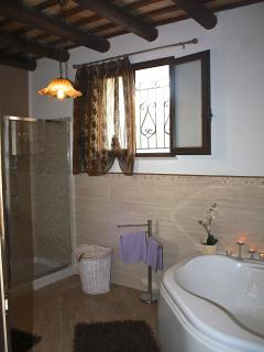 main bathroom with shower and bath tub