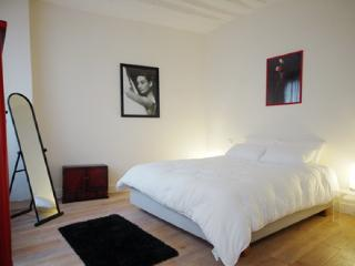 Paris Apartment in Lively Marais Neighborhood - Chloe, Parijs
