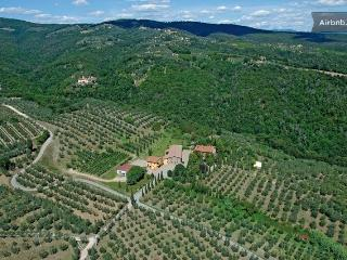 Classic Tuscan farmhouse in the Capraia e Limite countryside
