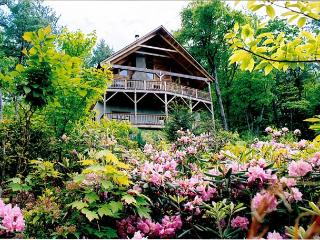 Ollie's Overlook  fabulous multi-level cabin located in Blackberry Gorge