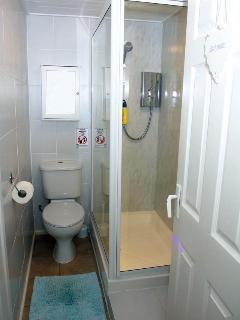Shower and WC area, sink washbasin behind open door