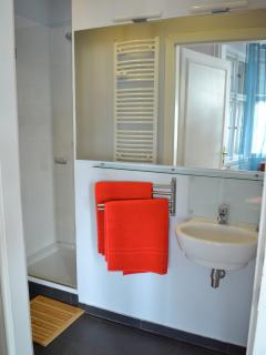The ensuite bathroom from the master bedroom