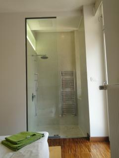 A walk-in shower in the master bedroom